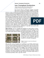 Greenhouse Transplant Production