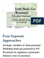 """New York Shale Gas Potential - Executive Summary   - James """"Chip"""" Northrup"""
