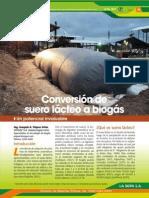 Conversion de Suero Lacteo a Biogas (1)