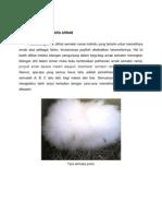 ASSIGNMENT ARNAB.docx