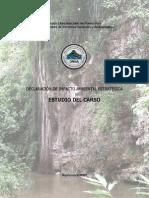 DIA-E_estudio_carso.pdf