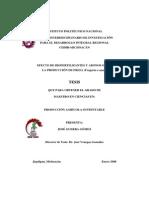 Efectobiofertilizantes en Fresa