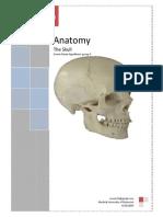 The Skull.pdf