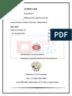 Career-Path-in-Hdfc final himanshu (1).doc