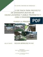 Proyecto Ganaderia Bovina Dp La Pradera Imp