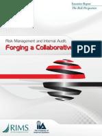 IIA & RIMS, 2012.pdf