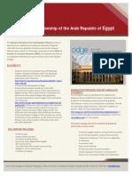 2013-2014 Egypt Fellowship Flyer