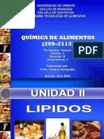 Presentacion_Lipidos