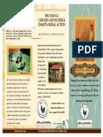 bca dra brochure 1