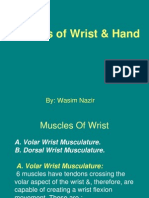 Muscles of The Hand & Wrist.ppt