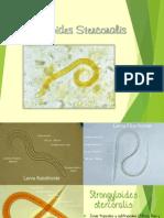 Strongiloidiasis