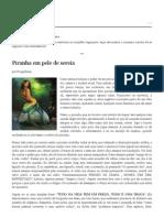 Canal do Búfalo - 30 jan 2011 até 20 ago 2011.pdf