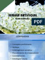Semilla Artificial