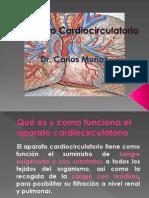 Cardiocirculatorio CNA Sexto