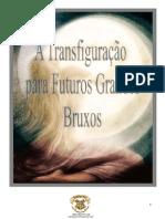 Transfiguração para Pequenos Grandes Bruxos - 2º ano