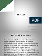 harinas-110320131314-phpapp01