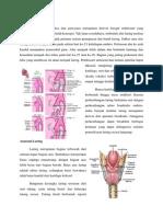 Embriologi Laring.docx