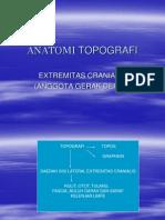 anatomi-topografi.ppt