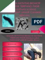 slide fitokimia.pptx