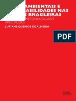 Livro Riscos Ambientais e Vulnerabilidades Nas Cidades Brasileiras Almeida