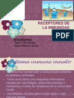 receptores inmunoLOGIA PPT