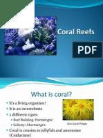CoralReefslauren.ppt