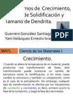 Exposición Dendritas