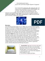 graphic organizer directions