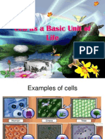 Cell as a Basic Unit of Life