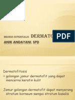 m.s. Dermatofitosis