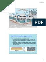 StrukturDanFungsiMembranSel-februari09.pdf