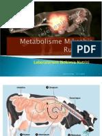 Metabolisme Mikrobia Rumen 1.ppt