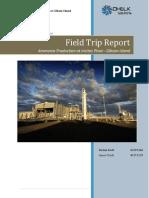 Field Trip Report.docx