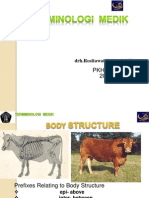 BODY_STRUCTURE_KUL_13[1].ppsx