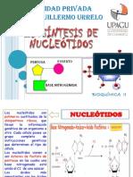 EXPO BIOSÍNTESIS DE NUCLEOTIDOS - BIOQUIMICA