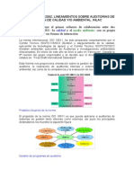 ISO-19011-2002-Resumen