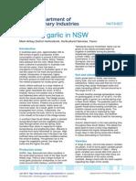 growing-garlic-in-NSW.pdf