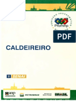 Caldeireiro (Senai Prominp).pdf