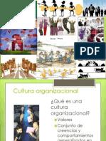 Cultura Organicacional