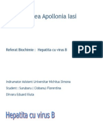 Hepatita B-referat.doc