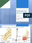 Patología del nervio cubital