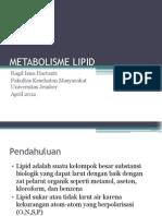 6.Metabolisme Lipid