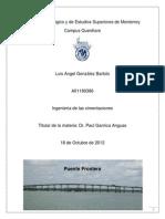 Puente Frontera Entrega Corregido (1)_LUIS