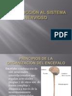 Introduccion Al SNC Farmacologia