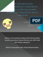 b.indasdf.pptx