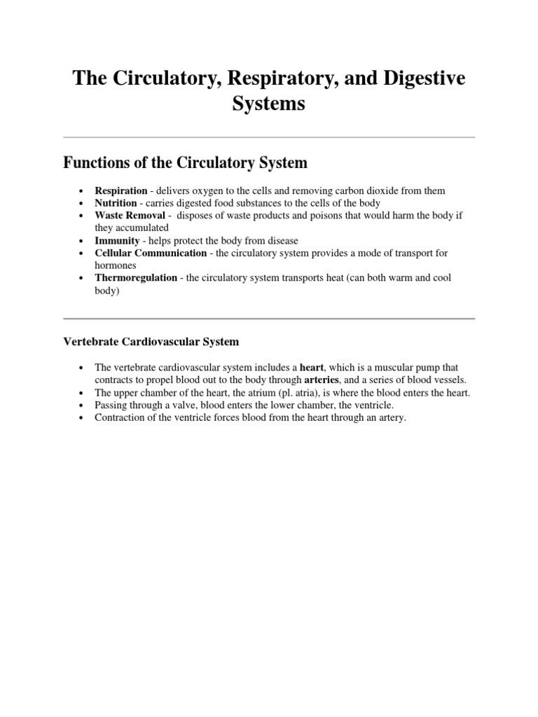 The Circulatory Respiratory Digestive Systempdf Heart Digestion