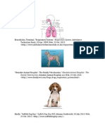 respiratory system info paper