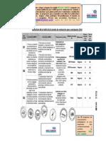 Matriz de Evaluacion Docente 2014 - Red Del Saber