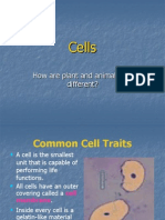 Cell parts.ppt
