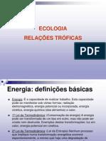 03 ecologia - relacoes troficas